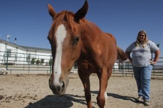 Mustang Spirit Ranch, Pinon Hills