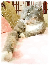 Painted in Waterlogue