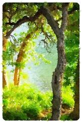 Guadalupe River, Gruene, Texas